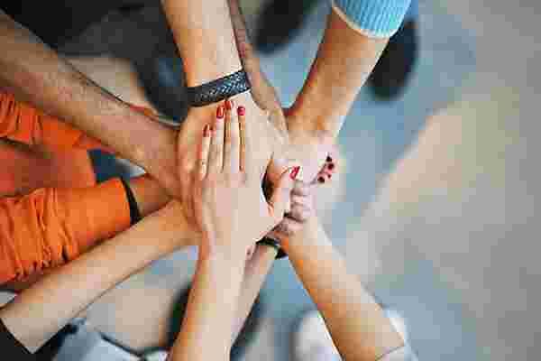 您是否正在为团队提供所需的支持?