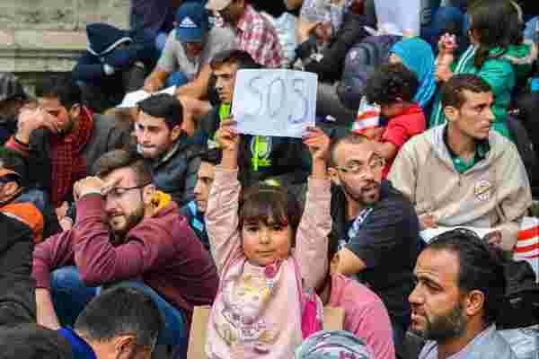 企业如何应对叙利亚难民危机