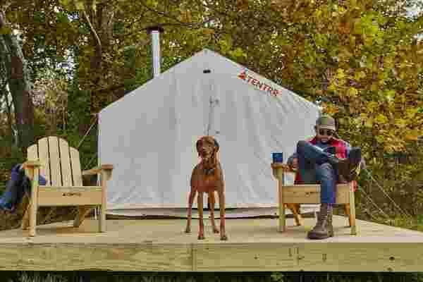查看业主和他们的狗的Airbnb露营体验