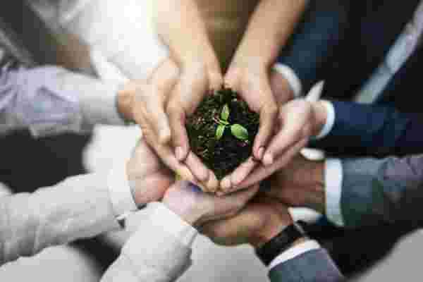您不必成为所有公司就可以对企业社会责任产生影响